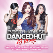 Best House DANCEDHUT DJ Remix - Various Artists - Various Artists