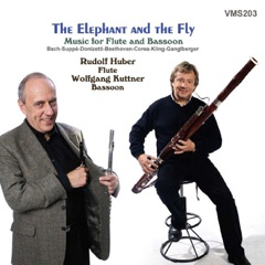 The Elephant and the Fly