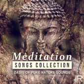 Meditation Songs Collection - Oasis of Pure Nature Sounds, Relaxing Ocean Waves for Yoga Practices and Healing Chakra Balancing