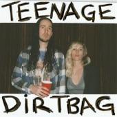 Walk Off the Earth - Teenage Dirtbag