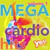 MEGA Cardio Hits vol. 1 (Non-Stop Mix for Fitness and Workout @ 135BPM)