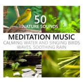Nature Sounds Meditation Music: Calming Water and Singing Birds, Waves, Soothing Rain, Beach, Waterfall, Rainforest, Tropical Spa Surf