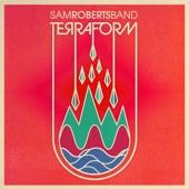 Sam Roberts Band - Black Spark