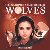Wolves (Rusko Remix) - Single