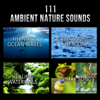 111 Ambient Nature Sounds: Best Relaxing Music, Hypnotic Ocean Waves, Calm Sounds of Rain, White Noise, Healing Waterfalls and Animal Songs to Reduce Stress - Various Artists