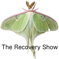 Podcast cover art for The Recovery Show » Finding serenity through 12 step recovery in Al-Anon – a podcast