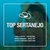 Top Sertanejo (Ao Vivo)