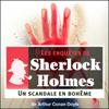 Arthur Conan Doyle - Les Enquêtes de Sherlock Holmes - un Scandale en Bohême artwork