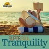 Super Soul: Tranquility - Various Artists