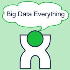 Big Data Everything