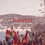Palmas - Flowers
