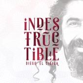 Diego El Cigala - Periódico de Ayer