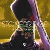 Put  'Em High (feat. Therese) [2004] - Single - StoneBridge