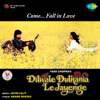 Jatin - Lalit - Dilwale Dulhania Le Jayenge (Original Motion Picture Soundtrack) [Dialogues Version] artwork