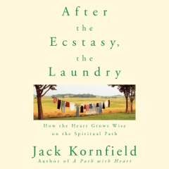 After the Ecstasy, the Laundry: How the Heart Grows Wise on the Spiritual Path (Unabridged)