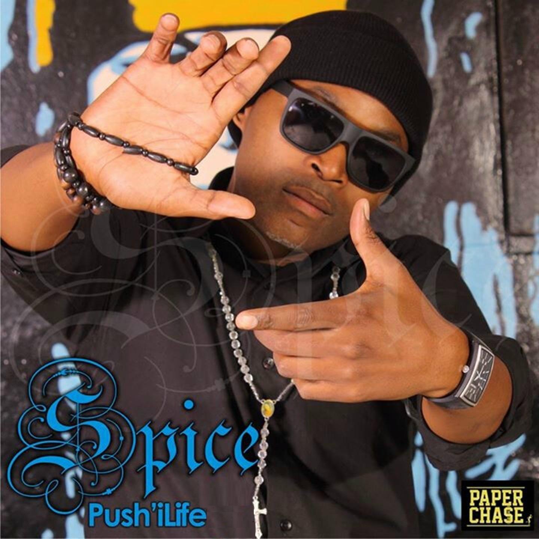 Push'iLife (feat. Sands) - Single
