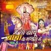 Me To Nachu Baba Ke Bhandara Me, Vol. 2 - Vakil Sitara & Manprit Man