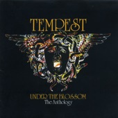 Tempest - Brothers