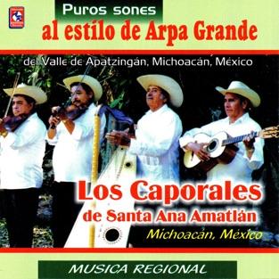 Puros Sones al Estilo de Arpa Grande – Los Caporales de Santa Ana Amatlan