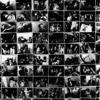 Live Seeds - Nick Cave & The Bad Seeds
