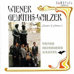 Kettenbrücken-Walzer, Op. 4