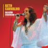 Beth Carvalho - O Mundo é um Moinho artwork