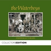 Fisherman's Blues by The Waterboys on Apple Music