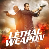 Lethal Weapon 2. Staffel
