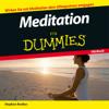 Stephan Bodian - Meditation für Dummies artwork