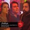 Jhalliya Coke Studio Season 9 Single