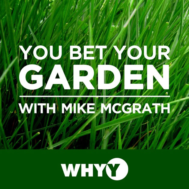 You Bet Your Garden by WHYY on Apple Podcasts