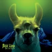 Malai Llama - Gentle Giant