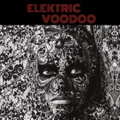Elektric Voodoo - Secrets