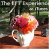 The EFT Experience: Sharing the Art of Emotional Freedom