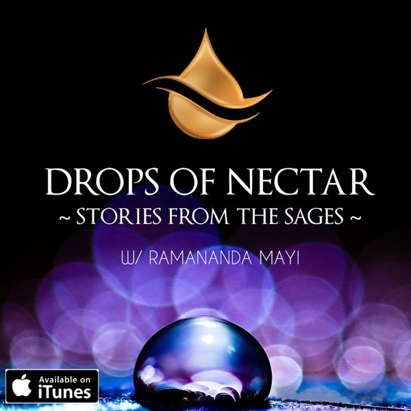 Drops of Nectar - Yoga Philosophy & Satsang (Similar to Mooji, Ekhart Tolle, Adya Shanti, Gangaji & Christopher Titmuss)