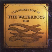 The Waterboys - The Three Day Man (Peter Powell Session, May 1983)