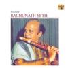 Pandit Raghunath Seth - Raghunath Seth