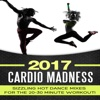Sizzling Hot Dance Mixes for the 20-30 Minute Workout - 2017 Cardio Madness