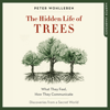 Peter Wohlleben - The Hidden Life of Trees: What They Feel, How They Communicate - Discoveries from a Secret World (Unabridged) portada