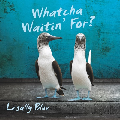 Watcha Waitin' For? - Legally Blue album