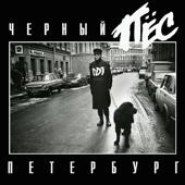 Чёрный пёс Петербург (Live)