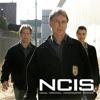 NCIS, Season 5 wiki, synopsis