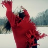 Red Dress feat Chantal Kreviazuk Single