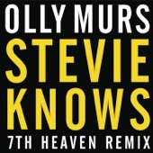 Stevie Knows (7th Heaven Remix) - Single