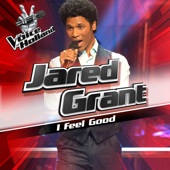 I Feel Good (From The Voice of Holland 6)