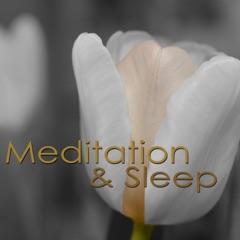 Zen Meditation Songs