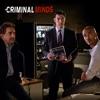 Criminal Minds, Season 10 wiki, synopsis