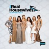 The Real Housewives of Beverly Hills, Season 5 - Synopsis and Reviews