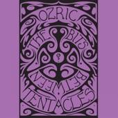 Ozric Tentacles - Secret Names
