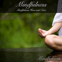 Mindfulness: Mindfulness Here and Now